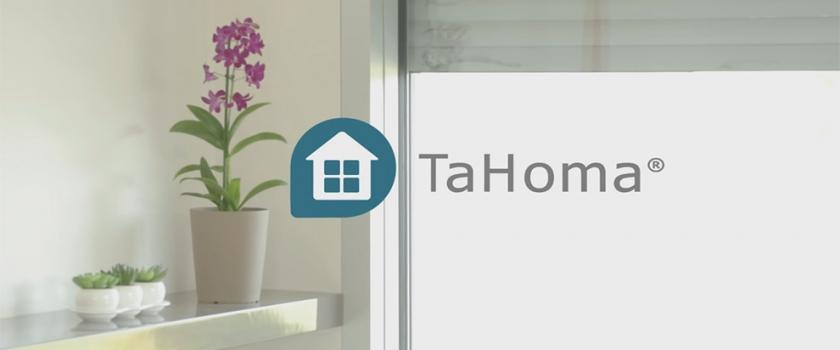Box Tahoma